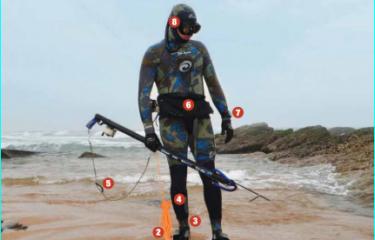 Back to Basics: Shore Dive