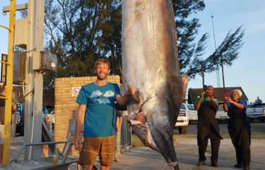 Spearo Albert Prinsloo Shoots Record-Breaking 375 kilo Black Marlin in Cape Vidal.