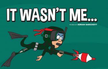 It Wasn't Me….