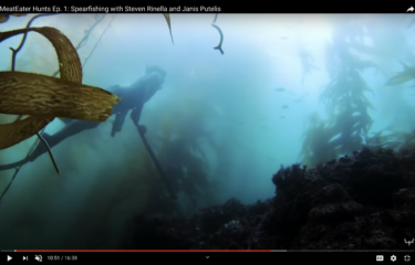 Spearfishing Featured on MeatEater Hunts